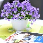 Ideenwettbewerb Rheinland-Pfalz